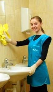 Recherche emploi femme de ménage ile de france